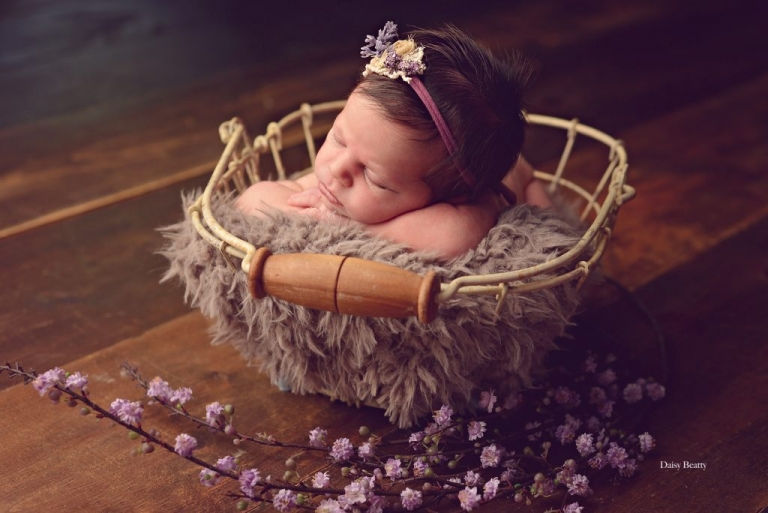 newborn portrait in manhattan by nyc newborn photographer daisy beatty