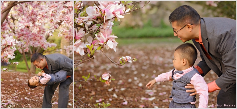 central park family photography with pink blossoms by daisy beatty