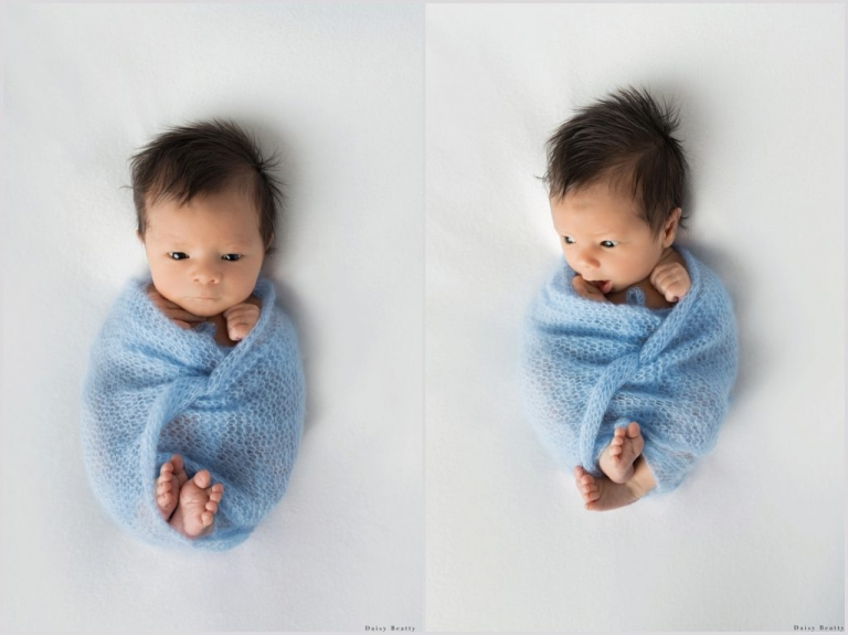 newborn baby photography by daisy beatty
